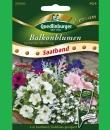 Quedlinburger Balkonblumen stehende Mischung 6m Saatband...