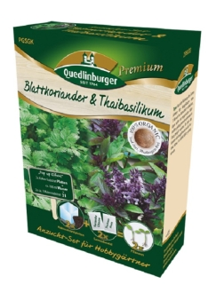 Quedlinburger Saatgut Koriander & Thaibasilikum Anzucht-Set 298003