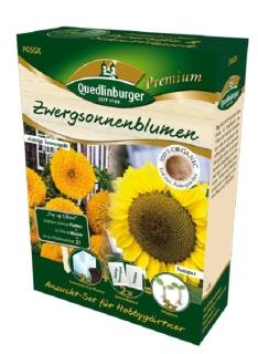 Quedlinburger Saatgut Zwergsonnenblume Anzucht-Set 298010